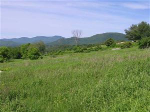 Photo of 2 Old Farm Road Road, Pittsford, VT 05763 (MLS # 4760796)