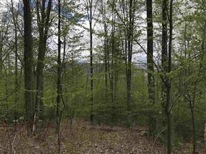 Photo of 1710 Route 140 Route, Wallingford, VT 05773 (MLS # 4645851)