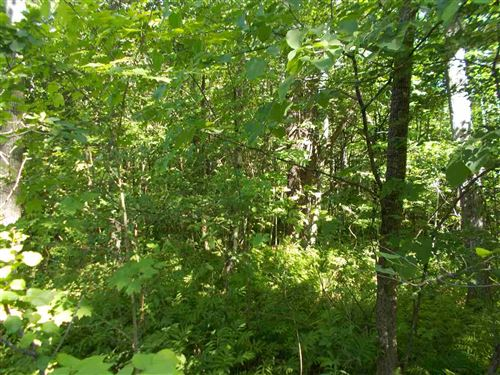Photo of 0 Hewitt Road, Claremont, NH 03743 (MLS # 4719868)