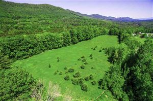 Photo of 0 Tinmouth Road, Danby, VT 05739 (MLS # 4643869)