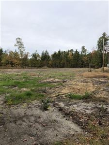 Photo of 00 Poverty Plains Road, Warner, NH 03278 (MLS # 4780873)