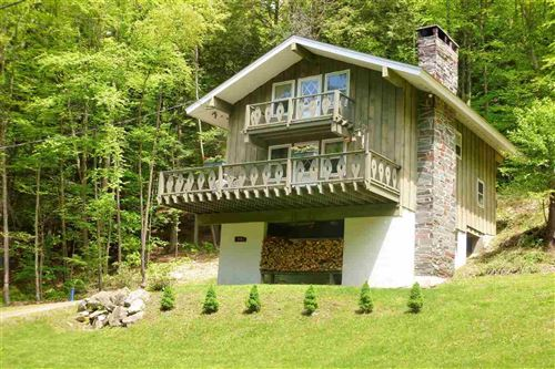 Photo of 92 Harwood Place, Townshend, VT 05353 (MLS # 4787876)
