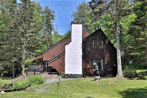 Photo of 217 Falcon Loop West, Rochester, VT 05767 (MLS # 4770887)