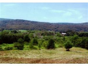 Photo of 189 Green Hill Lane, Wallingford, VT 05773 (MLS # 4773905)