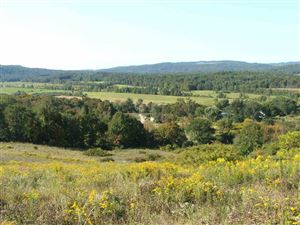 Photo of 2391 VT Route 153 Highway, Pawlet, VT 05775-9758 (MLS # 4659959)
