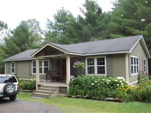 Photo of 556 Pencil Mill Road, Castleton, VT 05735 (MLS # 4765967)