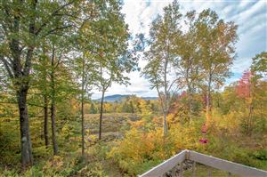 Photo of 174 Durgin Hill Road, Freedom, NH 03836 (MLS # 4781991)