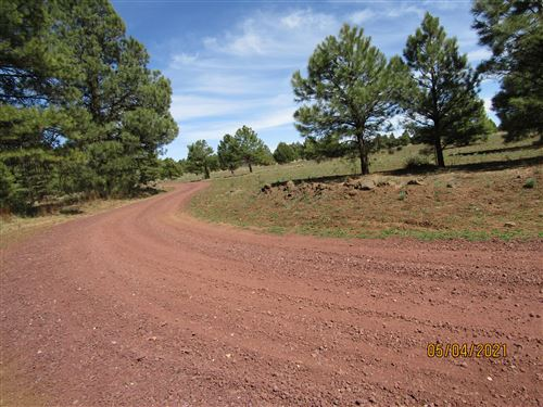Photo of 312 S Forest Service 3341 Road, Parks, AZ 86018 (MLS # 186068)