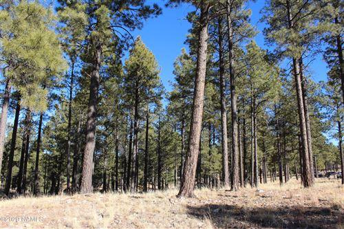 Photo of 2442 E Del Rae Drive #205, Flagstaff, AZ 86005 (MLS # 184097)