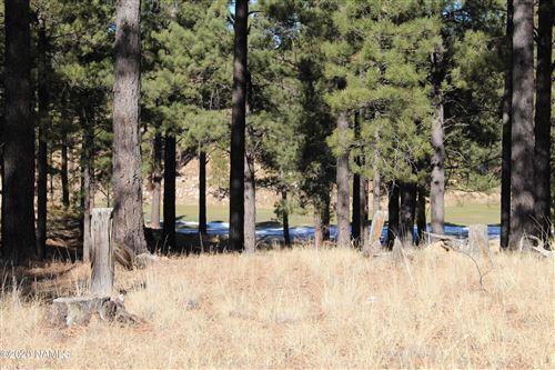 Photo of 2460 E Del Rae Drive, Flagstaff, AZ 86005 (MLS # 184098)