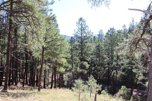 Photo of 5216 Hidden Hollow Road, Flagstaff, AZ 86001 (MLS # 179206)