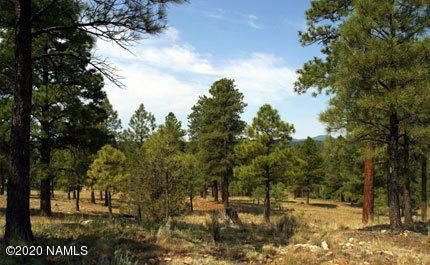 Photo of 4810 E Gandalf Lane, Flagstaff, AZ 86004 (MLS # 180372)