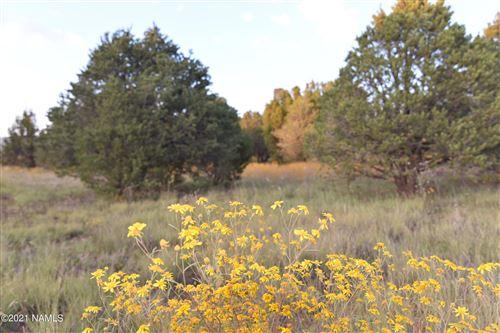 Photo of 1270 E Alimos Way, Williams, AZ 86046 (MLS # 187410)