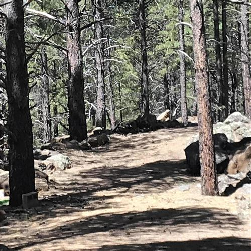 Photo of 1608 N Locksley Drive #74, Parks, AZ 86018 (MLS # 177451)
