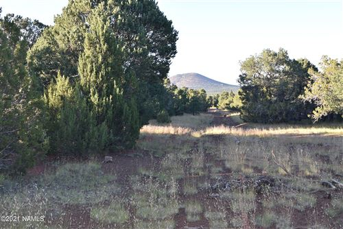 Photo of 7122 S Audrey Way, Williams, AZ 86046 (MLS # 187476)