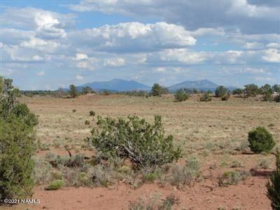 Photo of 1292 Indian Meadows Road, Williams, AZ 86046 (MLS # 187621)