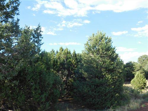 Photo of 7130 N Apache Avenue, Williams, AZ 86046 (MLS # 182642)