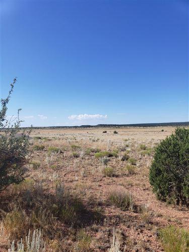 Photo of 001b Nottingham Way, Seligman, AZ 86337 (MLS # 182648)