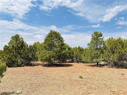 Photo of 10524 N Falcon Ridge Road, Williams, AZ 86046 (MLS # 186685)