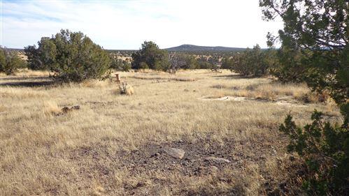 Photo of 211 Juniperwood Rnch Un 3 Lot 211, Ash Fork, AZ 86320 (MLS # 172736)