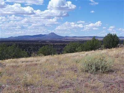 Photo of 204 Juniperwood Rnch Un 3 Lot 204, Ash Fork, AZ 86320 (MLS # 172742)