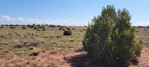Photo of 3139 Waverly Drive, Williams, AZ 86046 (MLS # 186774)