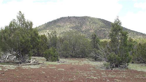 Photo of 10279 N Overlook Drive, Williams, AZ 86046 (MLS # 186792)