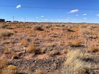 Photo of 4262 Well Field Road #26, Winslow, AZ 86047 (MLS # 184794)