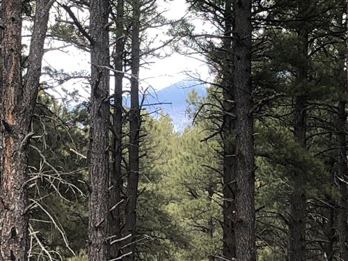 Photo of 0 Coyote Pass Rd Parcel C, Flagstaff, AZ 86001 (MLS # 179874)