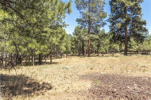 Photo of 1630 N Slippery Rock Road, Flagstaff, AZ 86004 (MLS # 181991)