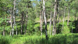 Photo of TBD Alpine Drive, Hill City, SD 57745 (MLS # 62029)