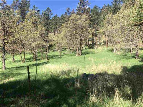 Photo of Tract Campfire Three Meadows Road, Keystone, SD 57751 (MLS # 67080)
