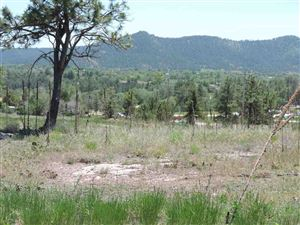 Tiny photo for Lots 16 & 17 N 26th Street, Hot Springs, SD 57747 (MLS # 58209)