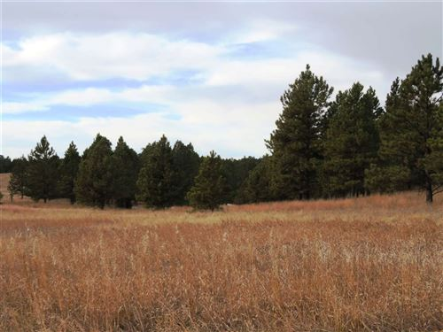Photo of Tract 1, Custer, SD 57730 (MLS # 63236)