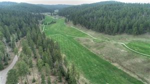 Photo of Lot 3 Ironwood Estates, Lead, SD 57754 (MLS # 61329)