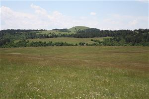 Tiny photo for TBD Whitewood Valley Road, Whitewood, SD 57793 (MLS # 62357)