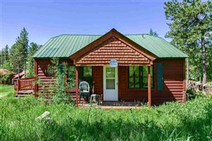 Photo of 11019 Whitetail Trail, Lead, SD 57754 (MLS # 61368)