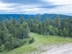 Tiny photo for Lot 41R Morning Star Drive, Lead, SD 57754 (MLS # 62379)