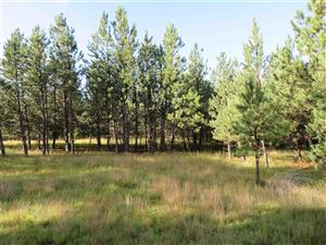 Photo of Tract #2 Custer Highlands, Custer, SD 57735 (MLS # 62409)