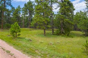 Photo of 26231 Country Club Drive, Hot Springs, SD 57747 (MLS # 62414)