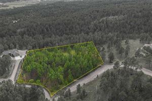 Photo of TBD Lot 6 Country Club Drive, Hot Springs, SD 57747 (MLS # 62420)
