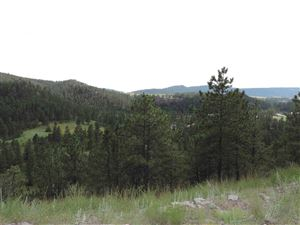 Tiny photo for 27287 Estates Road, Hot Springs, SD 57747 (MLS # 59562)