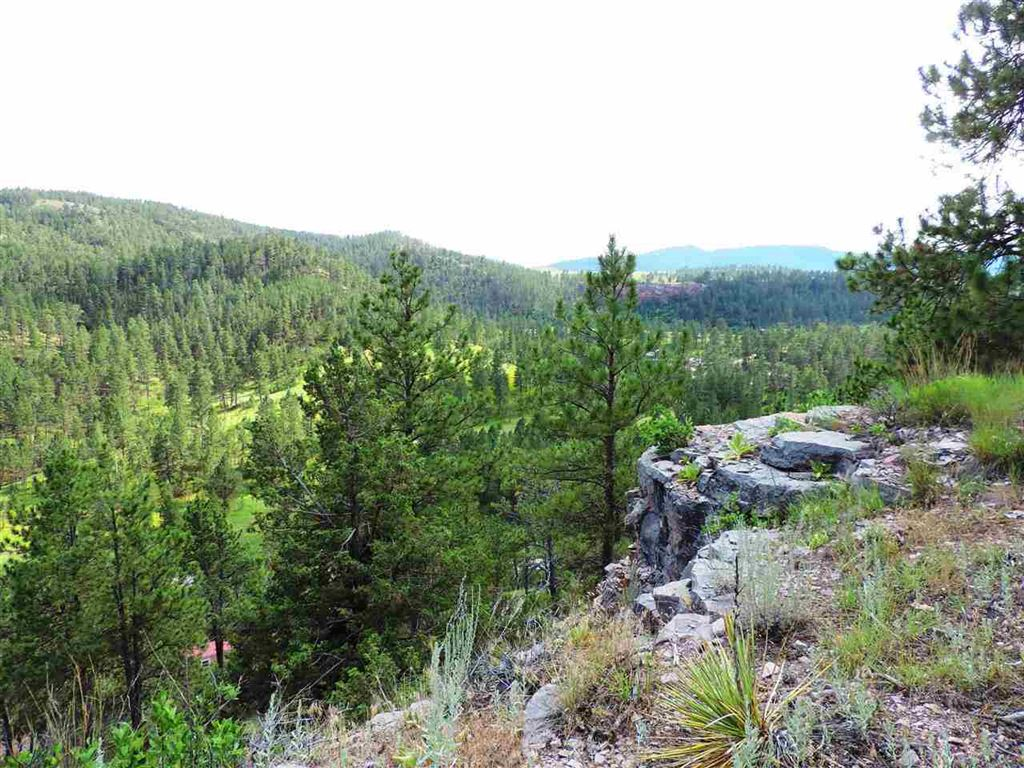 Photo for 27287 Estates Road, Hot Springs, SD 57747 (MLS # 59562)