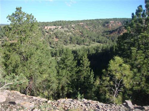 Photo of TBD Red Canyon Road, Hot Springs, SD 57747 (MLS # 59567)