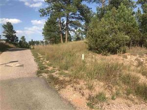 Tiny photo for TBD Meadowlark Drive, Hot Springs, SD 57747 (MLS # 62635)