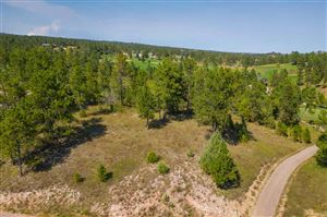 Tiny photo for TBD Bald Eagle Drive, Hot Springs, SD 57747 (MLS # 62636)