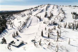 Photo of TBD Deer Mountain Road, Lead, SD 57754 (MLS # 60637)