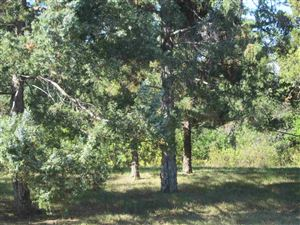 Tiny photo for 910 Elm Street, Hot Springs, SD 57747 (MLS # 62647)