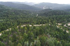 Tiny photo for Lot 11 Klondike Court, Lead, SD 57754 (MLS # 62650)