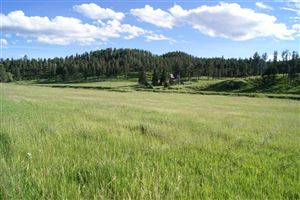 Photo of Tract 12R Sidney Trail, Custer, SD 57730 (MLS # 62668)